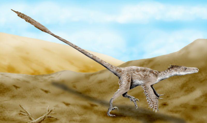 velociraptor_bw
