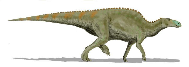 Edmontosaurus_BW